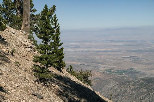 Mt. Baden Powell Birthday