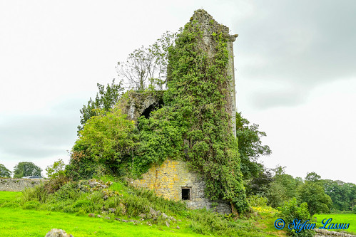 Ballyquirk Castle County Tipperary
