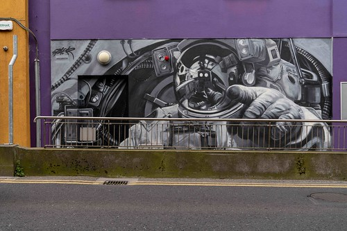 STREET ART BY SHANE SUTTON [WATERFORD WALLS - FITZWILTON HOTEL]-155375