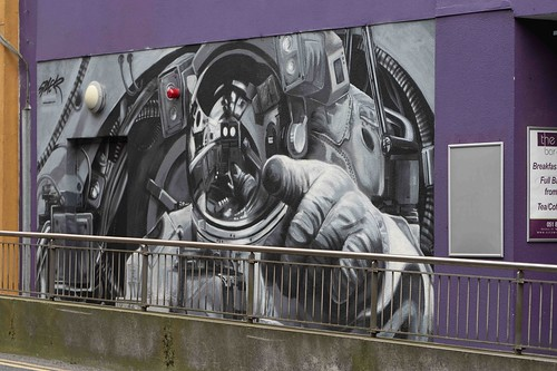 STREET ART BY SHANE SUTTON [WATERFORD WALLS - FITZWILTON HOTEL]-155376