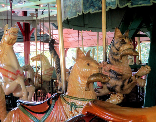 cats on a carousel!