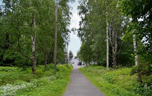 HAM1_Linnanpuisto