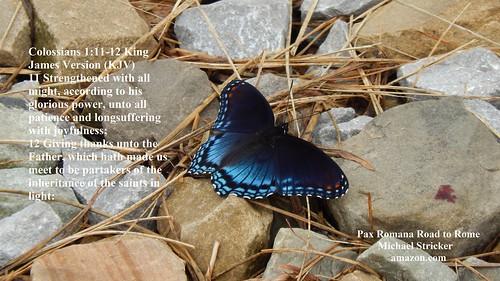 Colossians 1:11-12 King James Version (KJV)