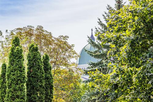 190910 Cimetière Notre-Dame des Neiges - Montréal    -0606