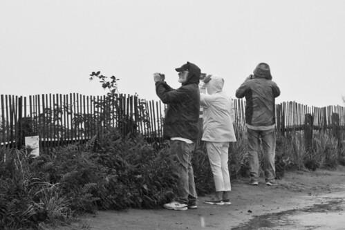 Hurricane Watchers