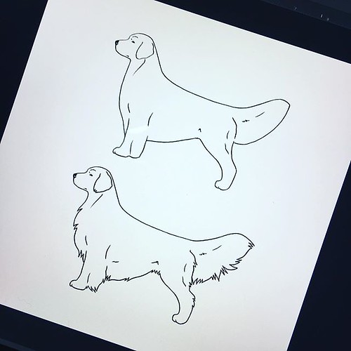 Are you into Golden Retrievers? Here's your chance to give input on upcoming Conkberry artwork for decals, stickers, pouches, etc. .. I want to include different show lines and working lines for each breed as I update/add breeds to the shop (for example t