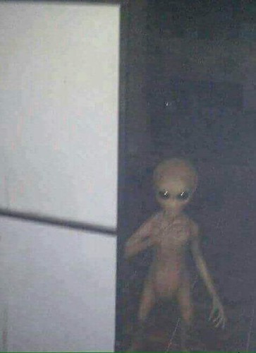 A Real Extraterrestrial Zeta Reticuli Tanned Alien caught on Camera.