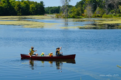 Aug 11 - canoeing on the Black River