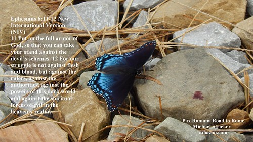 Butterfly Ephesians 6:11-12 New International Version (NIV)