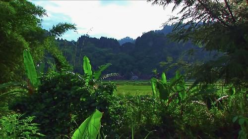 Indonesia - Sulawesi - Tanah Toraja - 322