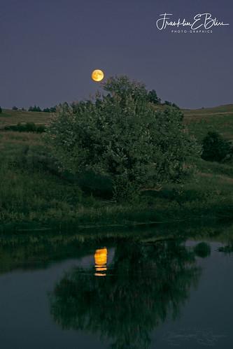 Reflections: Full Moon over Wetlands