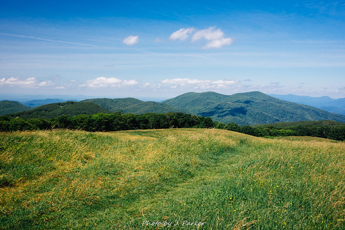 Max Patch View