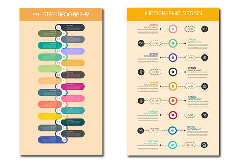 I will create premium level professional infographic design in 24h