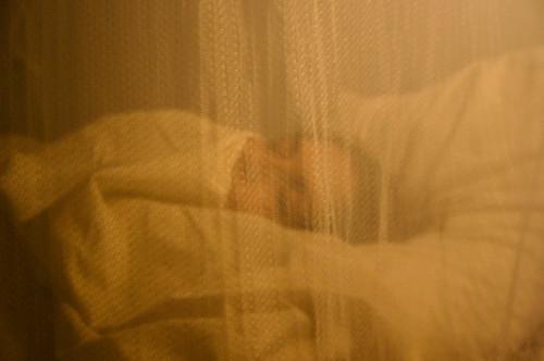 20071128 Sleeping beauty