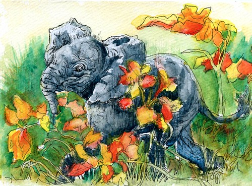 Baby Elephant Walk - Postcards for the Lunch Bag