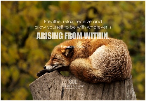 Panache Desai Breathe, relax, receive and allow yourself to be with whatever is arising from within