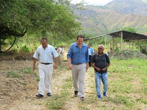 Visita del Jefe de la Misión de Verificación, Carlos Ruiz Massieu, a los proyectos productivos de personas en proceso de reincorporación en Miranda, Cauca. Sept. 10/2019