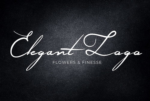 I will create excellent signature elegant logo