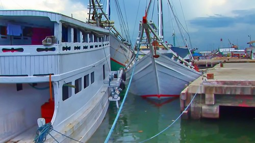 Indonesia - Sulawesi - Makassar - Paotere Harbour - 117