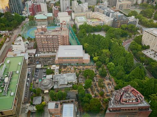 Vistas desde la Torre de Tokio.