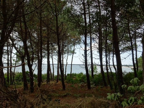 Pointe de Combrit Sainte-Marine