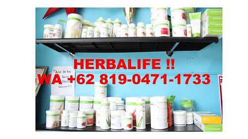 DISCOUNT, WA  +62 819 - 0471 - 1733, Herbalife Shake Denpasar