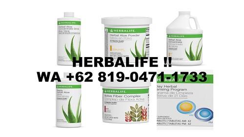 SALE, WA  +62 819 - 0471 - 1733, Herbalife Sidoarjo,