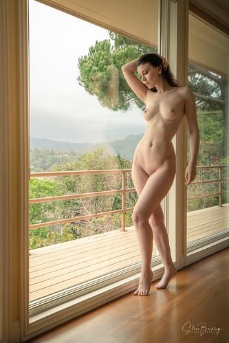 Lovely Window III