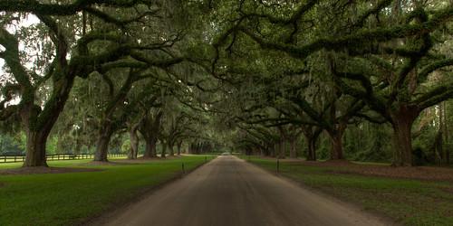 Boone Hall Plantation, South Carolina HDR
