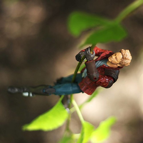 Heading out to Quazar VII on a rumor, Star Lord is in search of the rare and valuable nooma flower.   #marvellegends #marvellegend #marveltoy #marvelcomics #marvelcomicsuniverse #marvel  #toyphotography #figurephotography #figure #actionfigurephotography