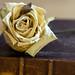 Mon amie la rose  Natacha Atlas