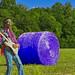Jimi Hendrix, Purple Hays... Hayes... Haze - h210