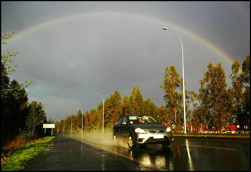 40. The rain bows