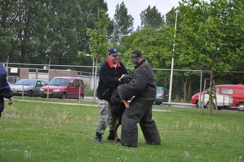 Nederland, The Netherlands, Holland, Paises Bajos, Zwijndrecht,PHV Zwijndrecht, Politie Honden Vereniging, Politie Honden Vereniging Zwijndrecht, 22-5-2010,