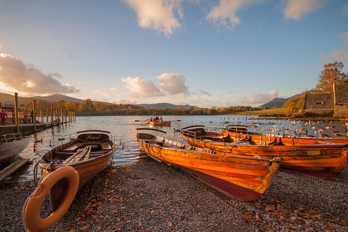 Golden Rowing Boats