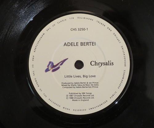 ADELE BERTEI - LITTLE LIVES, BIG LOVE