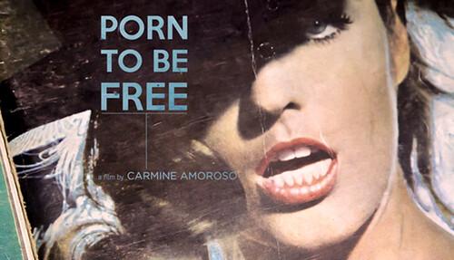 Porno e Libertà (Carmine Amoroso - Italia 2016) Leggi la recensione su Caina Picture Show CLICCA QUI -> http://ift.tt/28VERzz .