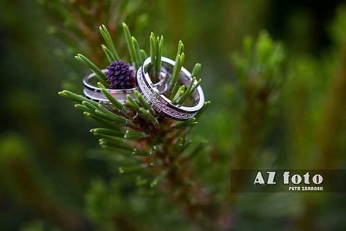 #wedding #ring #rings #silver #love #dayD #malevil #liberec #weddingday #green #weddingphotography #nature  #azfotky #weddings #weddingphoto #canonphotography #canon60d #czech #libereckykraj #liberecky_kraj #czechrepublic #europe #igerslbc #liberecgram #i