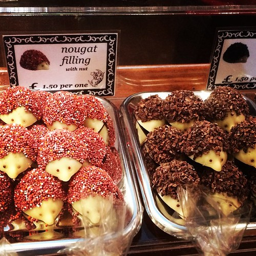 The gorgeous chocolates from the Frankfurt Christmas Market :) - the Frankfurt Christmas Market and Craft Market 2014 to Birmingham  @BirminghamFCM   #chocolate #hedgehog #christmas #xmas #frankfürtmarkt #frankfurtmarket #christmasmarket #festive #germanm