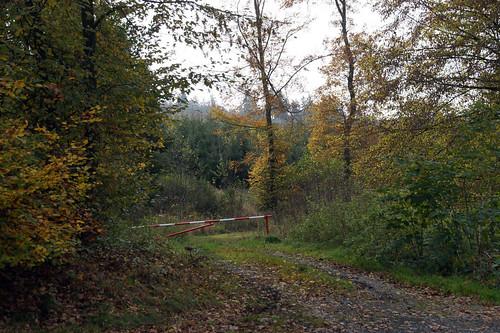 Rund um Fellinghausen und Osthelden