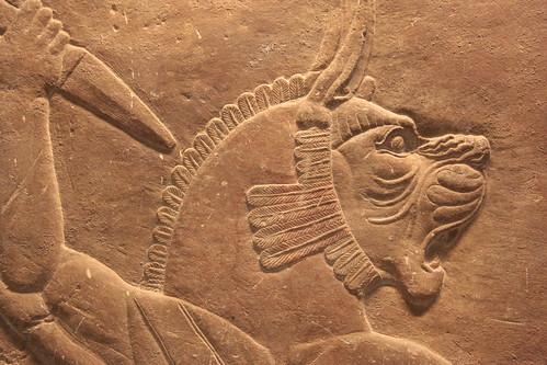 Bassorilievo Assiro al British Museum (21)