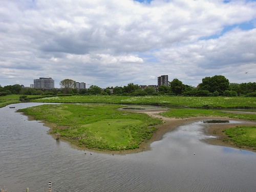 Barnes Wetland Centre near Hammersmith, London, England - May 2016