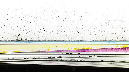 Scatter Plot - Print colors