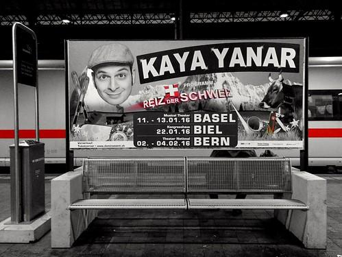 Day 48 - Kaya Yanar