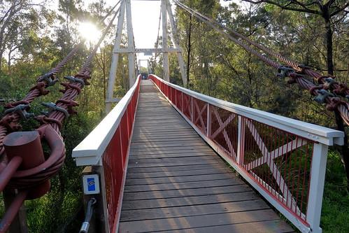 Yarra Bend Kane's Bridge 1934-, 2016 02