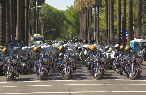 Gagle of Police Bikes