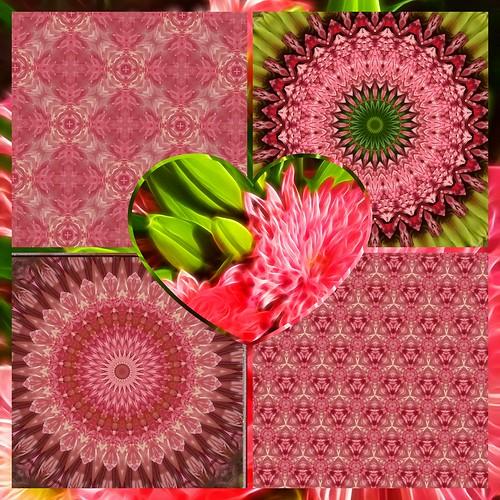Mosaic of Mandalas & Tessellations from Fractalius Flowers