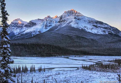 Mount Sarbach and North Saskatchewan River in Banff National Park Canada