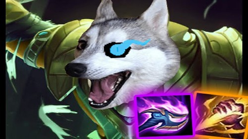 When You Play Nasus In The Jungle