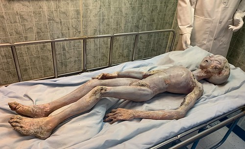 """Alien Prop created for the 1994 Showtime Movie """"Roswell."""""""
